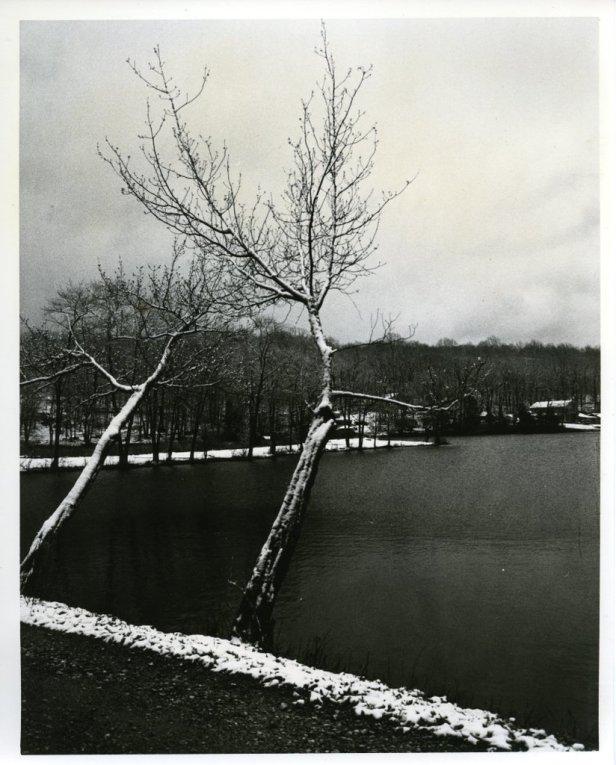 Lake, dektol